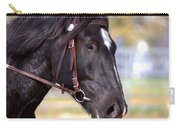 Under Rein Carry-all Pouch