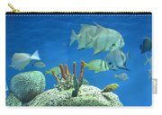 Underwater Beauty Carry-all Pouch