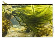 Underwater Shot Of Green Seaweed Attached To Rock Carry-all Pouch