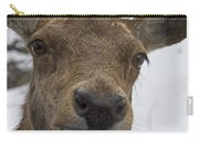 Up Close... Carry-all Pouch