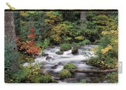 Upper Willamette River Carry-all Pouch