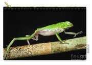 Vaillantis Monkey Frog Carry-all Pouch
