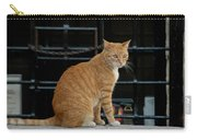 Valletta Cat Carry-all Pouch
