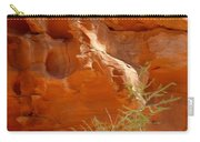Valley Of Fire Rock Formation Carry-all Pouch