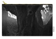 Valley Of The Oak Carry-all Pouch