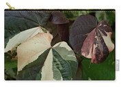 Variegated Carry-all Pouch