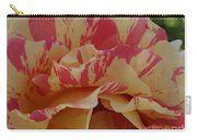Variegated Rose Carry-all Pouch