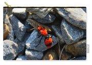 Velvet Ant Carry-all Pouch
