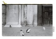 Cats Of Venice Carry-all Pouch