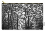 Vermont Forest Sunrise Ricker Pond Black And White Carry-all Pouch