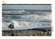 Seagull In Winter Carry-all Pouch
