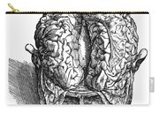Vesalius: Brain, 1543 Carry-all Pouch