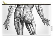 Vesalius: Muscles, 1543 Carry-all Pouch