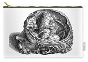 Vesalius: Olfactory Organs Carry-all Pouch