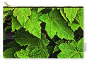 Vibrant Young Maples - Acer Carry-all Pouch