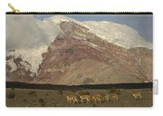 Vicuna Herd Grazing At Mt Chimborazo Carry-all Pouch