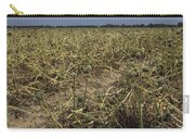 Vidalia Georgia Onion Fields Carry-all Pouch