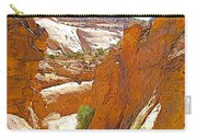View From Above Capitol Gorge Pioneer Trail In Capitol Reef National Park-utah Carry-all Pouch