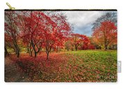 View Of Autumn Carry-all Pouch