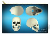 View Of Human Skull From Different Carry-all Pouch
