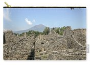 View Of Vesuvius Carry-all Pouch