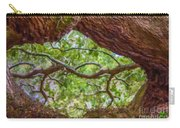 View Through Angel Oak Tree Carry-all Pouch