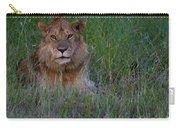 Vigilant Lion Carry-all Pouch