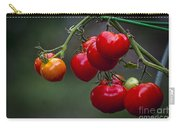 Vine Ripe Goodies  Carry-all Pouch by Marvin Spates