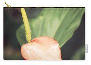 Vintage Anthurium Carry-all Pouch