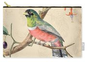 Vintage Bird Study-a Carry-all Pouch