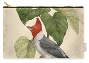 Vintage Bird Study-d Carry-all Pouch