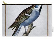 Vintage English Sparrow Square Carry-all Pouch