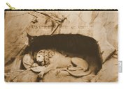 Vintage Lion Of Lucerne Carry-all Pouch
