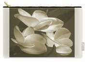 Vintage Plumeria Trio Carry-all Pouch