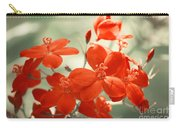 Vintage Red Flowers Carry-all Pouch