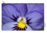 Viola Named Sorbet Blue Heaven Jump-up Carry-all Pouch by J McCombie