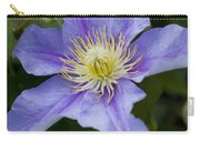 Violet Morning Carry-all Pouch