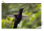 Violet Sabrewing At Cielito Sur Carry-all Pouch