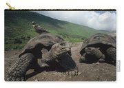 Volcan Alcedo Giant Tortoise Carry-all Pouch