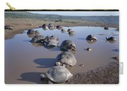 Volcan Alcedo Giant Tortoise Wallowing Carry-all Pouch