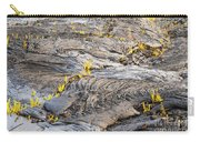 Volcano Regeneration Carry-all Pouch