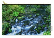 Wachlella Falls Columbia River Gorge National Scenic Area Oregon Carry-all Pouch