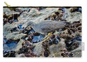 Wadering Tattler At Low Tide Carry-all Pouch