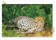 Waiting For Baby Cheetahs Carry-all Pouch