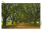 Walk With Me Carry-all Pouch by Steve Harrington