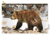 Walking On The Rocks Carry-all Pouch