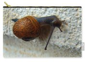 Wall Snail 1 Carry-all Pouch