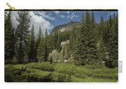 Wallowas - No. 1 Carry-all Pouch