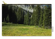 Wallowas - No. 4 Carry-all Pouch