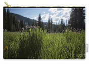 Wallowas - No. 5 Carry-all Pouch
